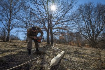 Bison rangers performing their daily duties in Poiana Ruscă, the second bison reintroduction site.