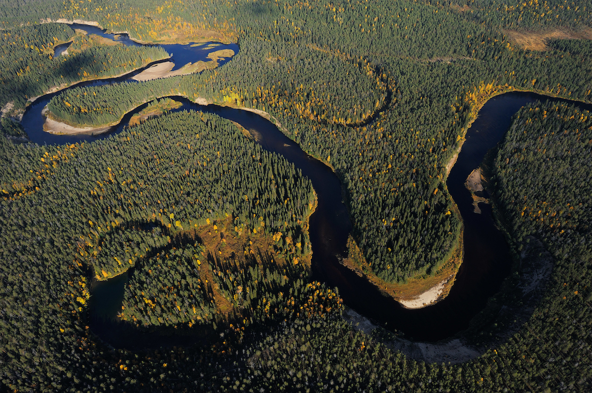 The new Dam Removal Europe report calls on European governments to start removing the estimated 30,000 obsolete dams, weirs and sluices negatively impacting biodiversity and local economies across the continent.