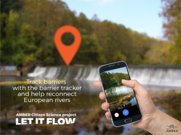 AMBER's handy #LetItFlow app lets Europeans become citizen scientists as they help to map all of the barriers in European rivers.