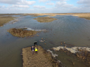 Wallasea Island is now a reserve managed by the Royal Society for the Protection of Birds (RSPB).