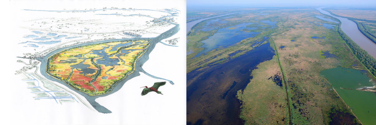 A vision becomes reality. In 2002 a shared vision for restoring the Danube Delta was published. For Ermakov Island - one of the model projects - an artist's impression first illustrated the desired result. The island was subsequently restored by reflooding in 2009, with the aerial image taken in 2017 showing an incredible natural comeback.