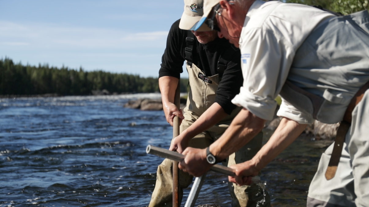 Restoring spawning grounds on the Pite River in the Swedish Lapland rewilding area.