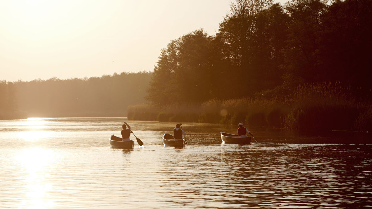 Canoeing along the beautiful Peene River for four days is one of the new offerings of European Safari Company.