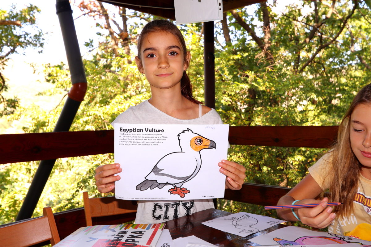 Games and painting helped children gain a better understanding of vulture biology during the International Vulture Awareness Day.