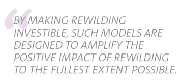 Investible and scalable models can accelerate Rewilding across Europe