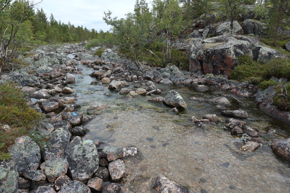One of the restored rivers in Finland.