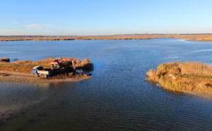 Dam Removal - Rewilding Europe - Danube Delta
