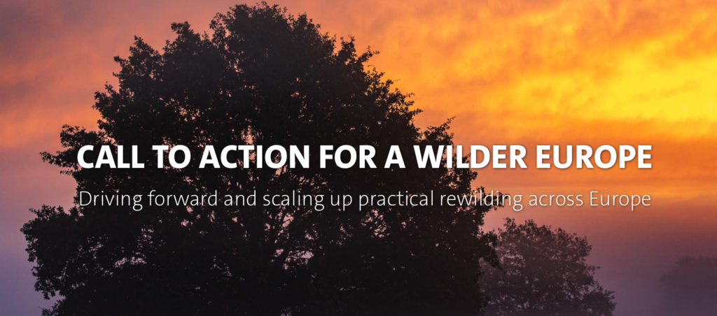 Call to Action for a Wilder Europe