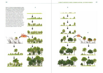 With clear illustrations, Rewilding Iberia helps to explain the benefits rewilding in Spain can offer.