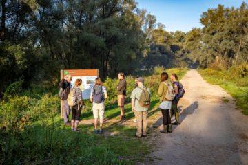 Young Rewilders Community visiting the Millingerwaard
