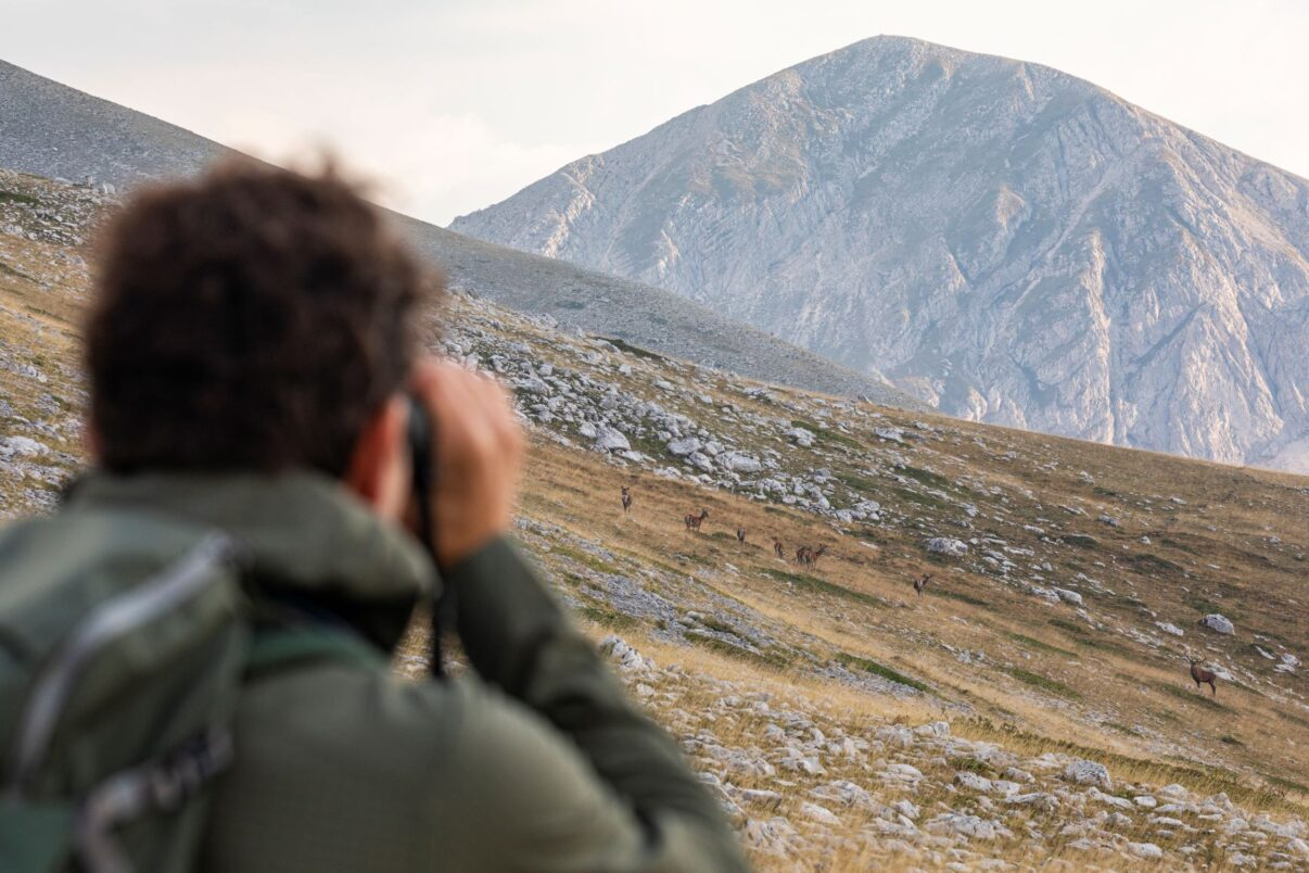 Rewilding tourism in the Central Apennines