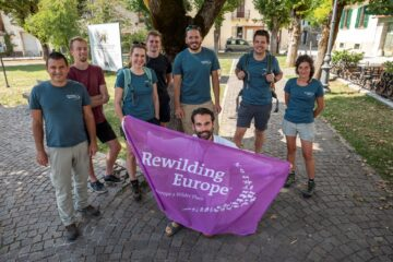 The second stage of the Rewilding Training Tourism programme will be facilitated by the European Safari Company, Wildlife Adventures and the Central Apennines team