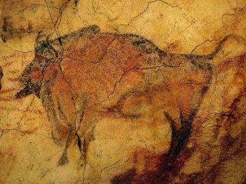 Coliboaia Cave Bison Art