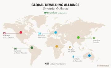 Global rewilding alliance map