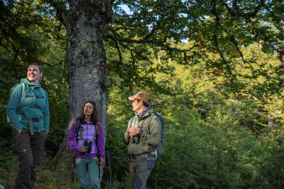Rewilding Training Tourism programme field training