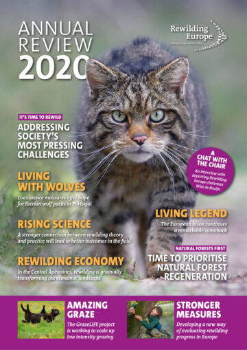 Rewilding Europe Annual Review 2020