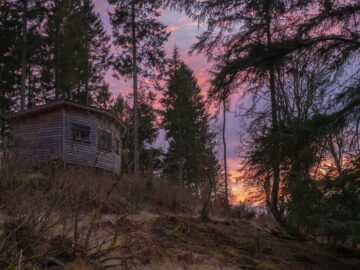 Accommodation at Bamff Wildland