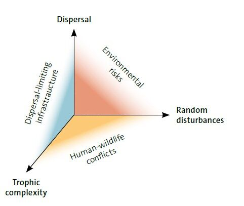 Three dimensions of ecological recovery